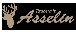 Taxidermie Asselin